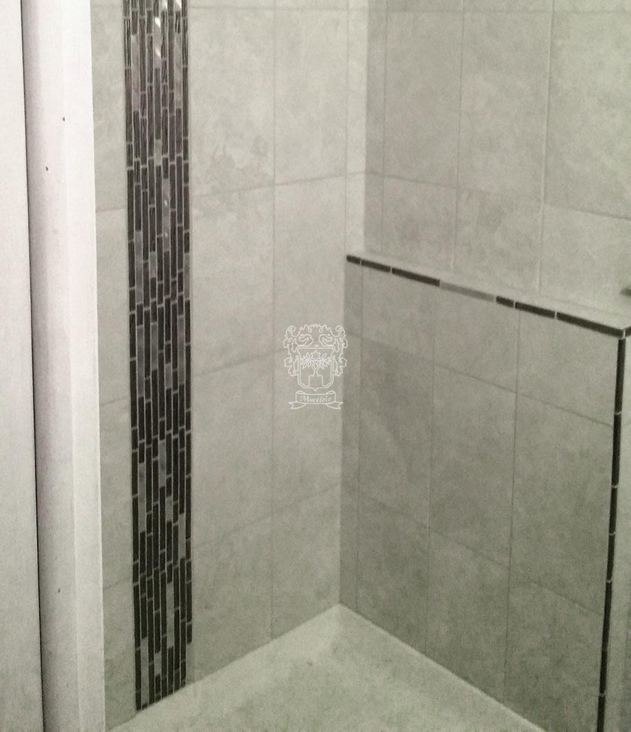 Brookfield WI Shower - Mucciolo Tile